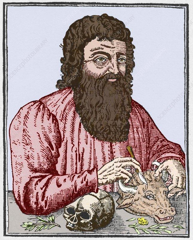 Hippocrates, Greek doctor