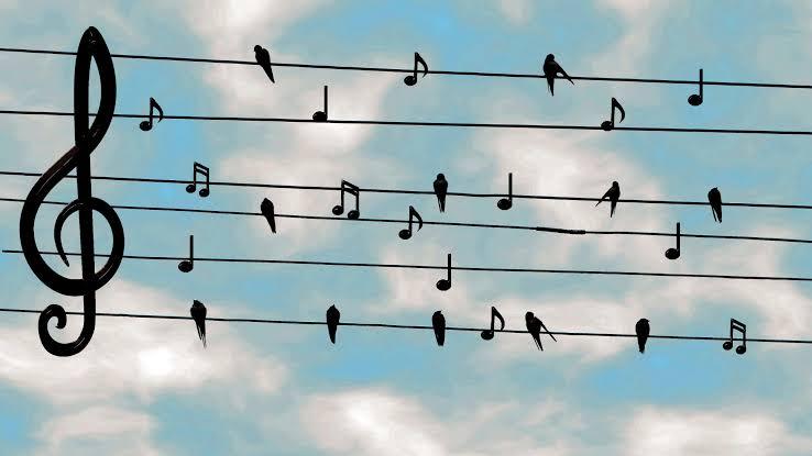 Dogada muzik 2