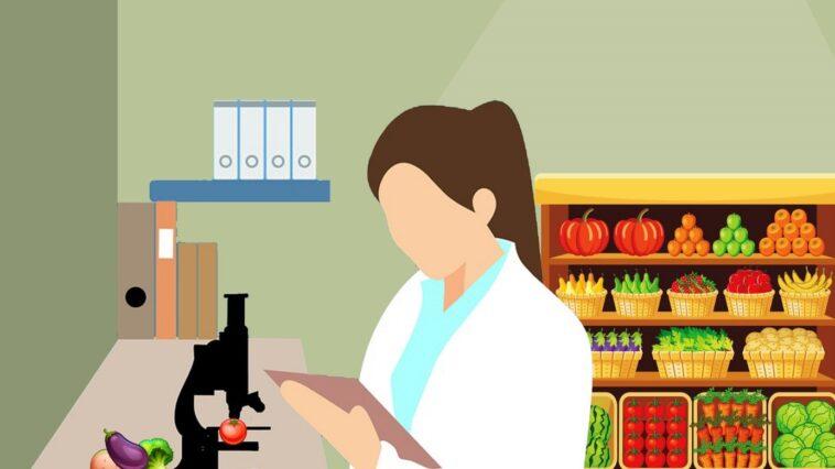 Gıda mühendsiliği