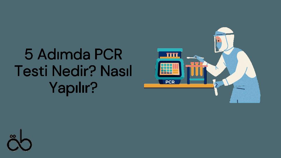 5 Adımda PCR Testi Nedir Nasıl Yapılır