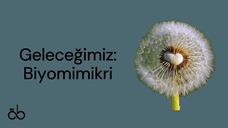 Geleceğimiz: Biyomimikri