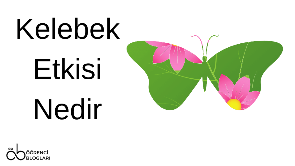 Kelebek Etkisi Nedir