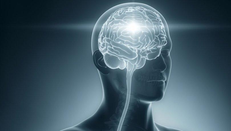 Duygusal Zekanın Nöroanatomik Boyutu